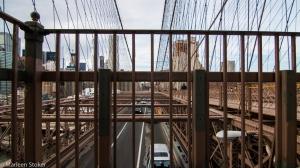 NYC21022015-5